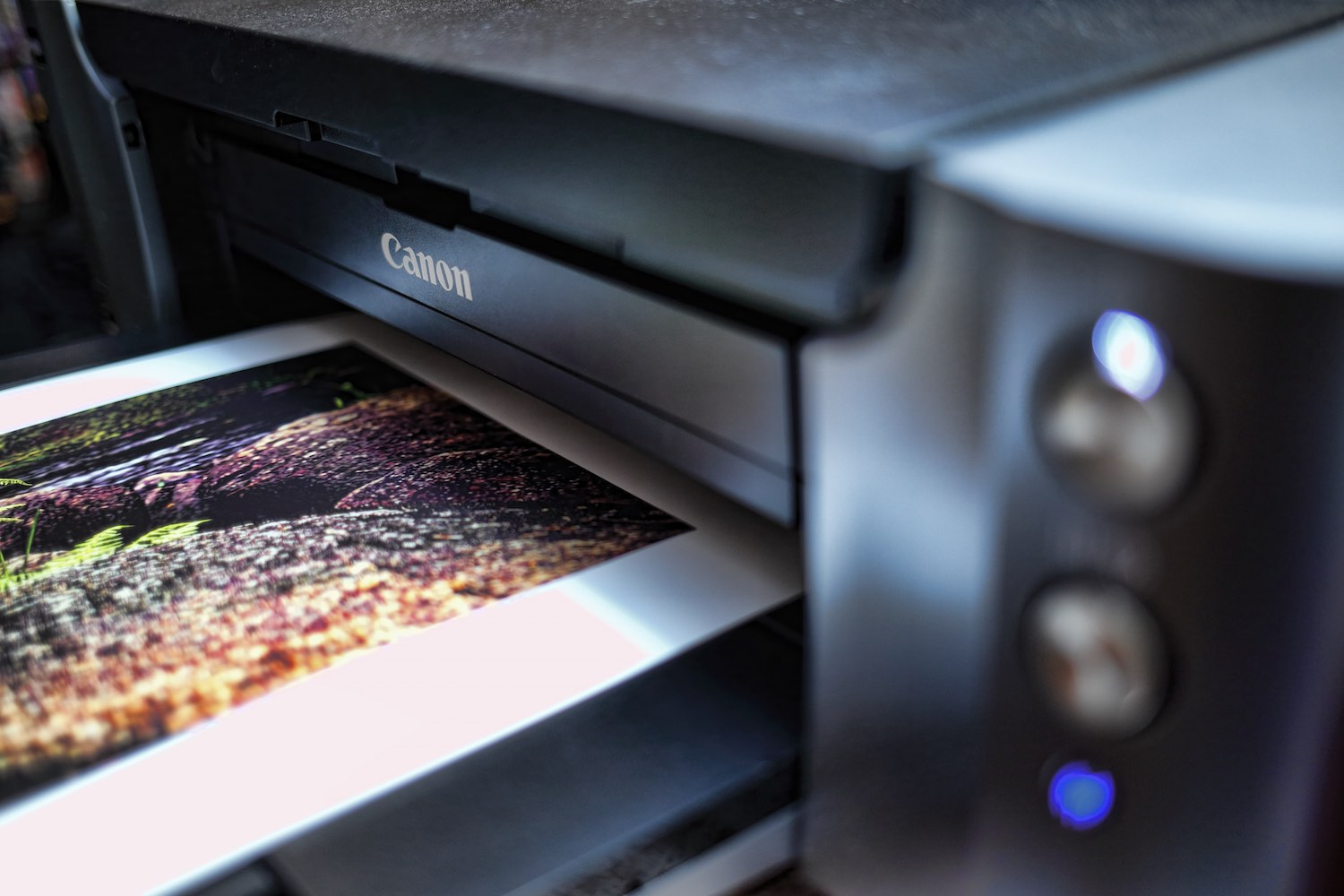 Printing on a Canon Pixma Pro printer.