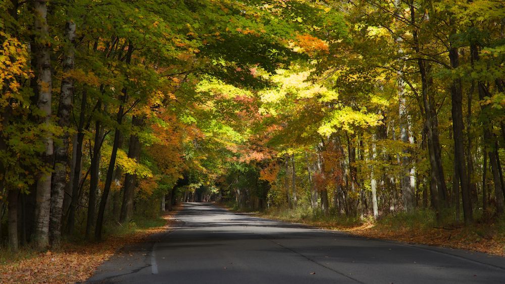 The Shore Road in Peninusula State Park winds through spectacular fall hardwoods along the Lake Michigan Shore
